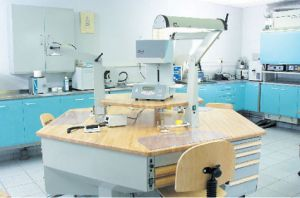 Asher Dental Lab - Dentists Newcastle